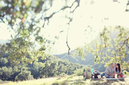 cute-picnic-engagement-04