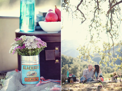 cute-picnic-engagement-05