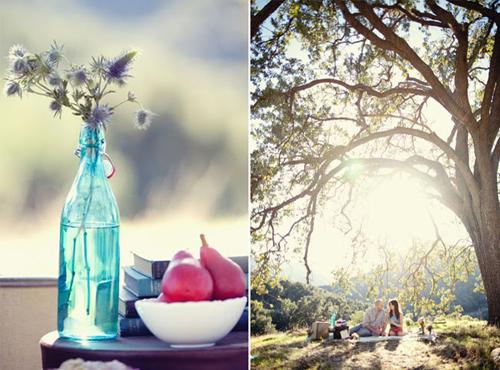 cute-picnic-engagement-07