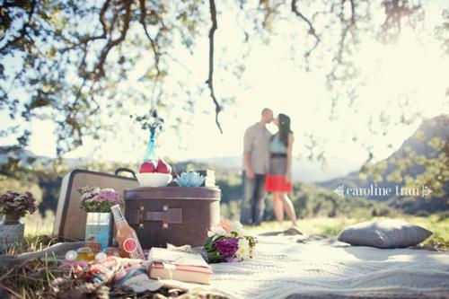 cute-picnic-engagement-12
