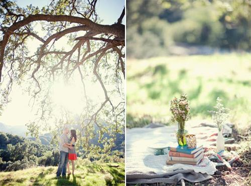 cute-picnic-engagement-14