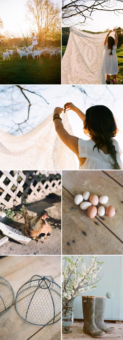 farm-to-table-wedding-2
