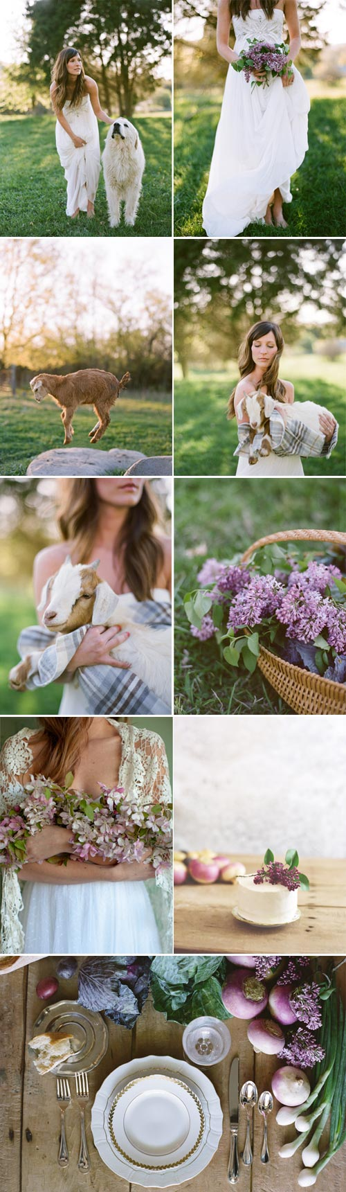 farm-to-table-wedding-3