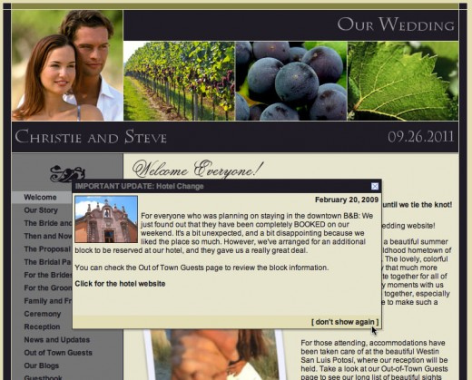 Posts you designate as an alert are displayed to all visitors to your wedding website